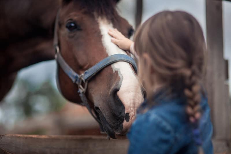 Therapeutisches Reiten Hannover Jolly Jumper Mädchen füttert Pferd