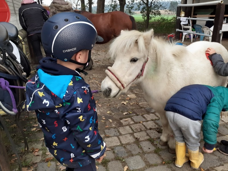 Therapeutisches Reiten Hannover Jolly Jumper Kinder mit Pony